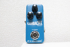 Flashback Mini Delayの全体画像